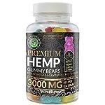 Hemp Gummies Premium 3000 Milligram High Potency – 50 Per Fruity Gummy Bear with Organic Hemp Extract Oil | Rich in Omega 3-6-9