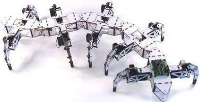 côn trùng robot
