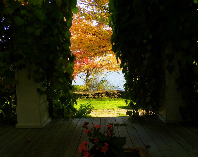Veranda With A View