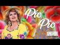 """Letra y Video - """"El pio pio"""" de Amanda Portales"""