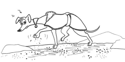 Comic-Whippet-Streusalz