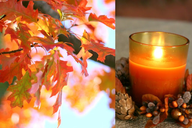 Leaves and Candelight