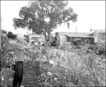 Mr. Paul E. Linthieum tends to the garden near the trailers: Fort Lauderdale, Florida (1967)