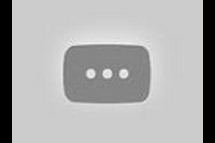 Czarny Kot I Biedronka Po Polsku Youtube