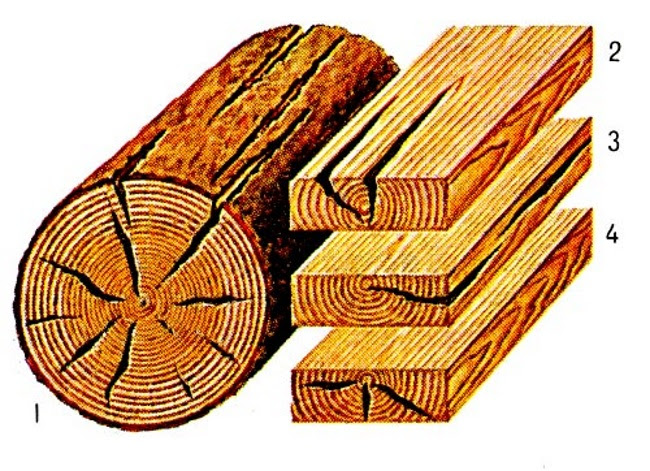 Дефекты древесины, трещины древесины