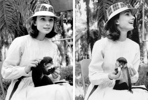 Congo, 1958: Audrey makes a new friend during the filming of The Nun's Story. Photos by Leo Fuchs.
