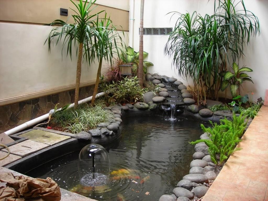 Taman Belakang Rumah Minimalis Lahan Sempit Desain Rumah Minimalis