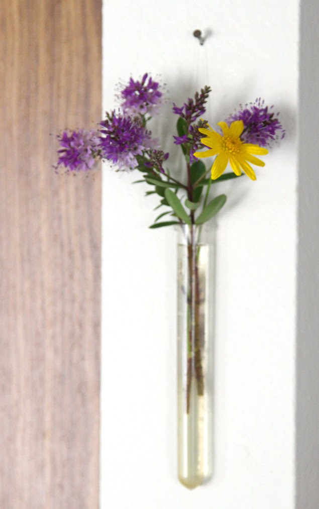Diy Easy Hanging Wall Vases A Piece Of Rainbow