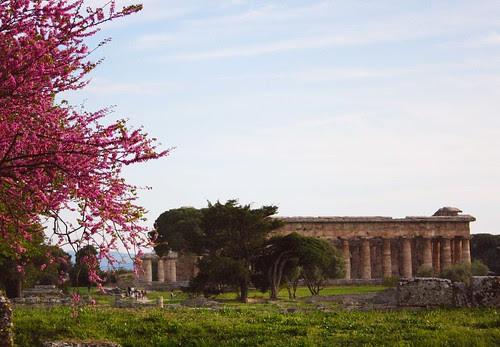 Paestum Magna Graecia