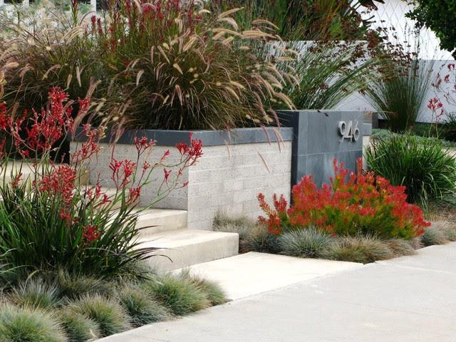 Modern Garden Design Australia