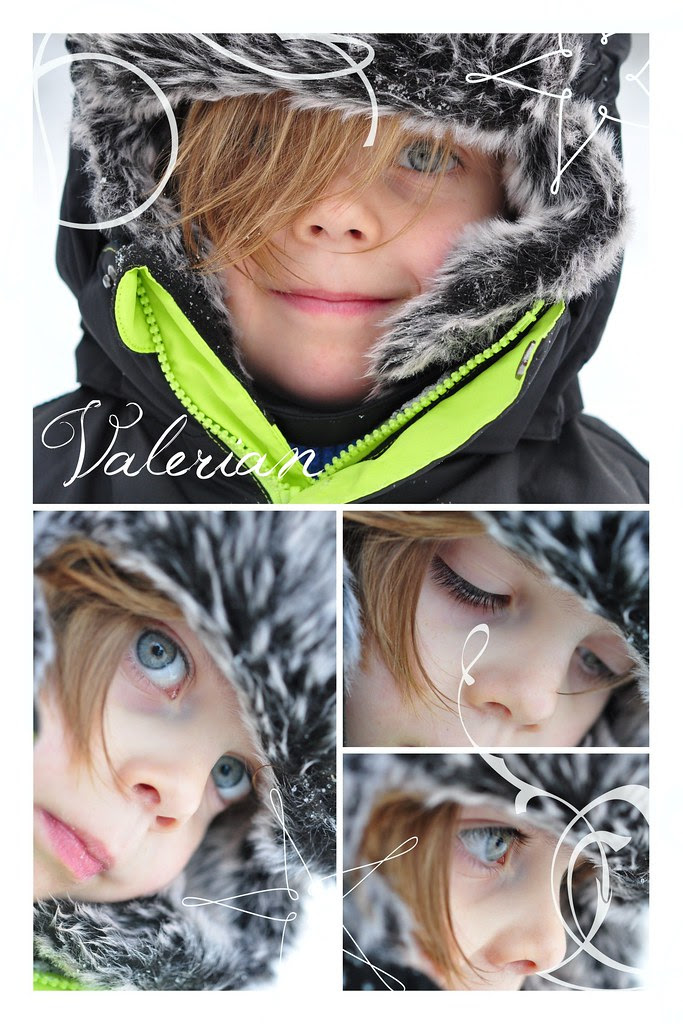 snow_picknick_valerian