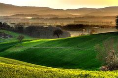http://farm1.static.flickr.com/182/424588948_a10434310b_m.jpg