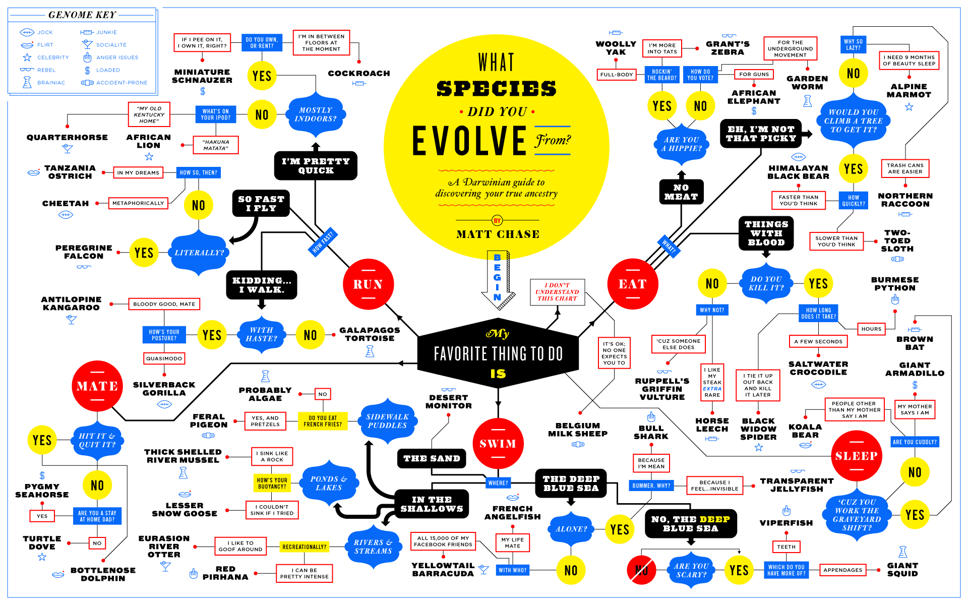 What Species Did You Evolve From? Infographic - Best ...