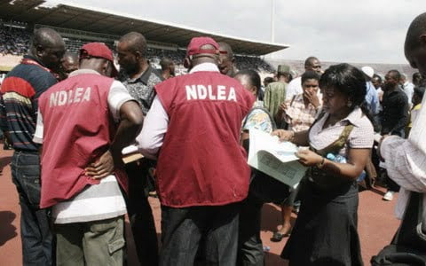 Image result for ndlea