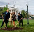 De boom van Macron is na minder dan een week alweer weg van gazon voor het Witte Huis