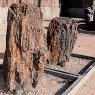 Jardin de Piedras