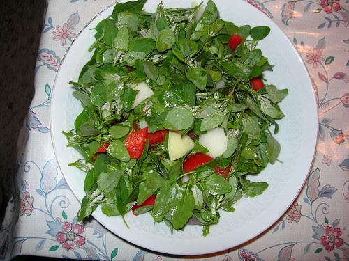 Gemischter Salat mit viel Melde