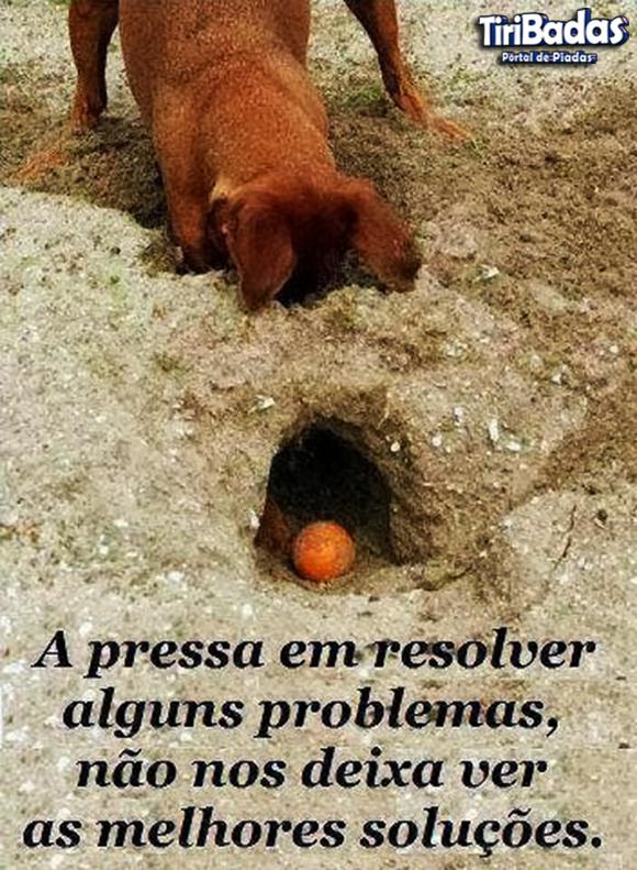 A pressa em resolver alguns problemas não nos deixa ver as melhores soluções