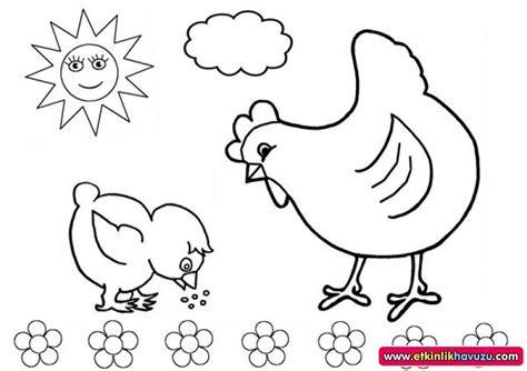 tavuk civciv okul oencesi boyama evimin altin topu
