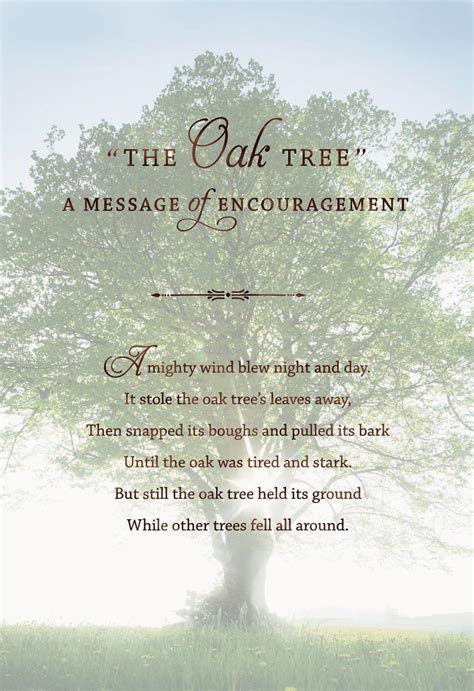 The Mighty Oak Tree Encouragement Card   Greeting Cards