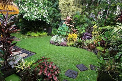 stunning tropical gardens souh africa   Google Search