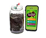 MudWatt - Clean Energy from Mud - Grow your own living fuel cell - Core STEM Kit