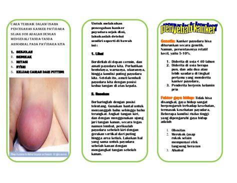 leaflet ca payudara