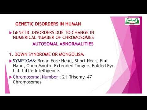 NEET  Bio Zoology Genetic Diseases Kalvi TV