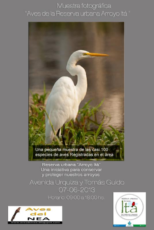 folleto expo itásmall