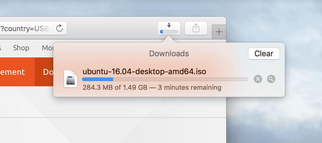 Safari Download In Progress