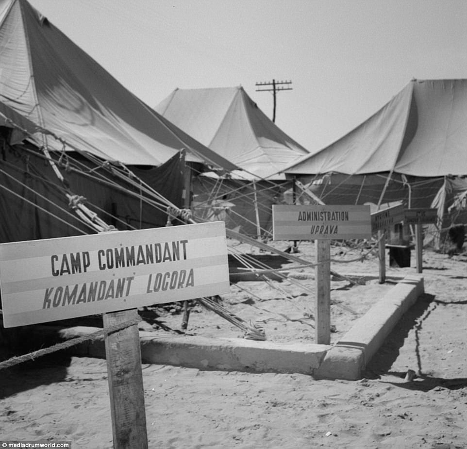 The British government also kept a strict regime, allowing exit from the complex only with passes. On several occasions, the area of El Shatt was bombed. More than 30,000 people lived in the refugee camp for a total of 18 months