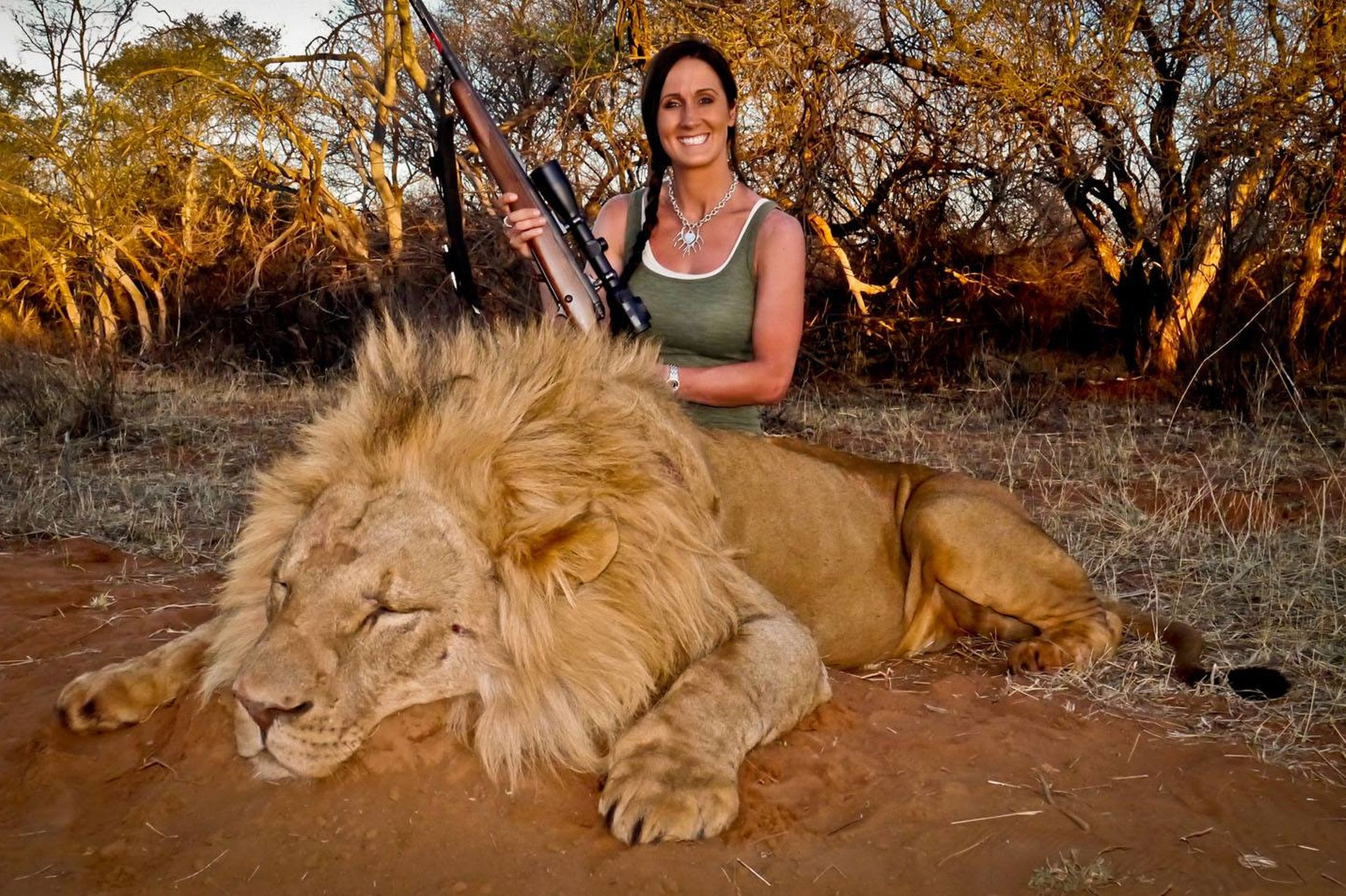 Latest on Melissa Bachman stalking the lion in South Africa