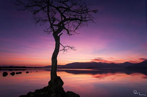 Sunset on Loch Lomond by David Hannah