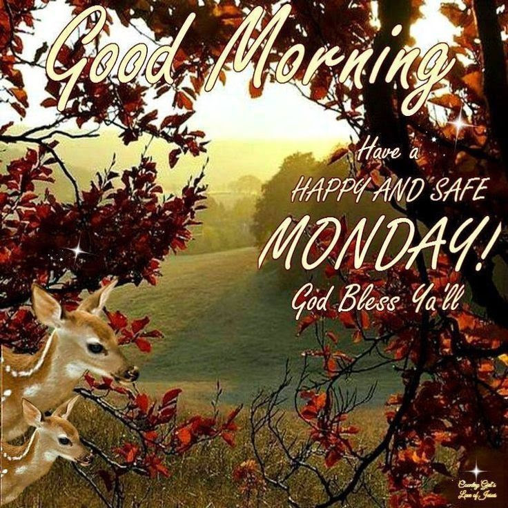 Good Morning Monday Pictures Photos And Images For Facebook