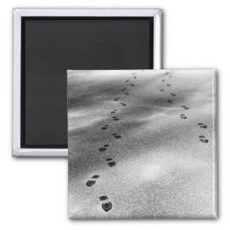 Footprints in Snow Fridge Magnet