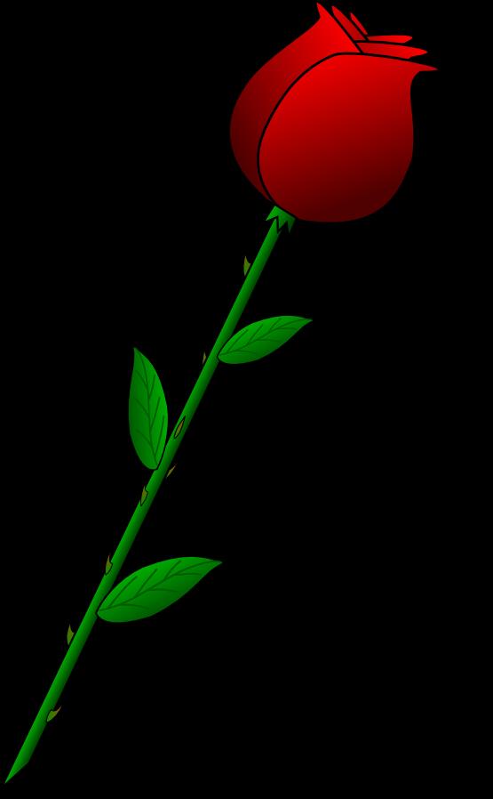 Free Flower Valentine Cliparts Download Free Clip Art Free Clip