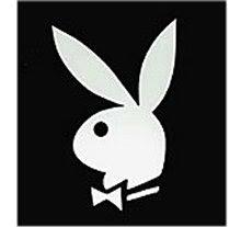 Coelho Playboy