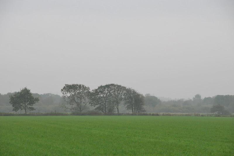 26/9.2012 - foggy bottom