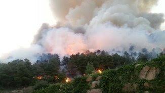 Imatge del foc de Vallbona de les Monges (@Agents_Rurals)
