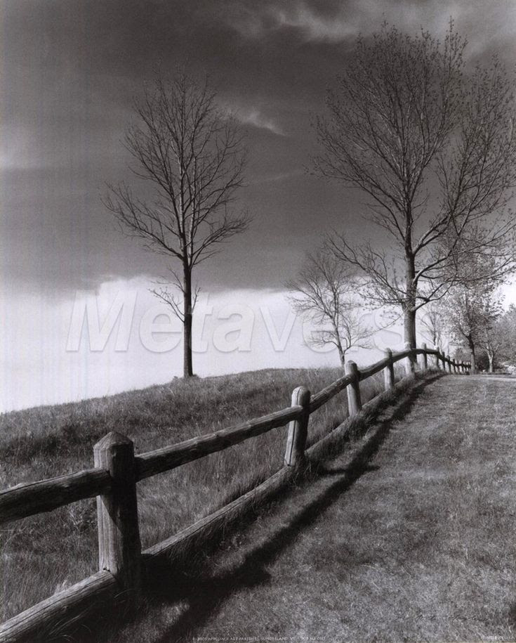 another Ansel Adams
