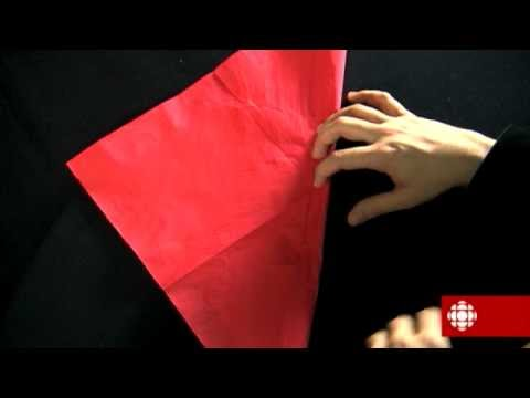 Magie explication - Explication tour de magie femme coupee en deux ...
