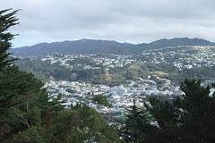 NZ 043