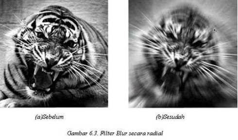 Tutorial Adobe Photoshop - Filter Blur
