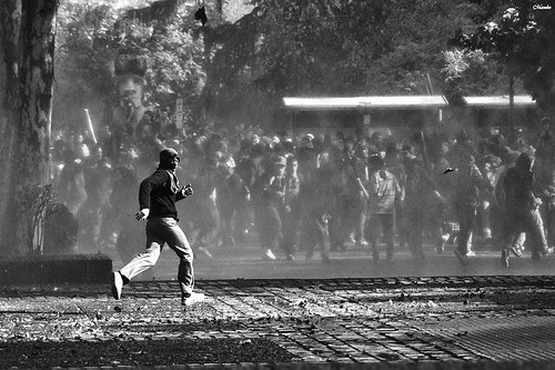 Corran el guanacooooooooo... by Alejandro Bonilla