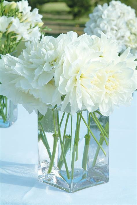 SIMPLE & PRETTY. Simple Glass Rectangular Vases of white
