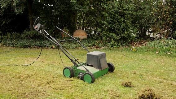 Wann Den Rasen Vertikutieren