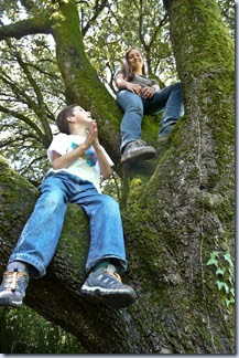 77 Simon in Sonja na drevesu