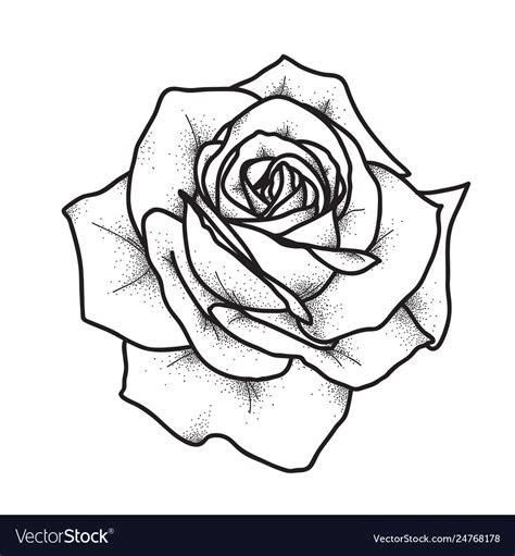 rose tattoo art vintage royalty vector image