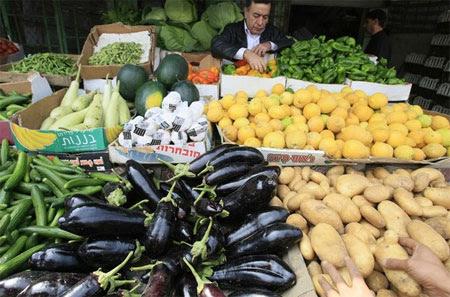 Gaza-veggies