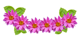 Flowers Png Images Flower Clipart Transparent Free